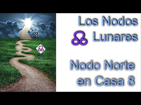NODOS LUNARES - Géminis y Sagitario ✅ Nodos del Karma 2020 from YouTube · Duration:  30 minutes 4 seconds