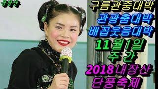 💗버드리💗 관광춤으로 공연장이 초토화되다 11월1일 주간 2018 내장산 단풍축제 초청 공연