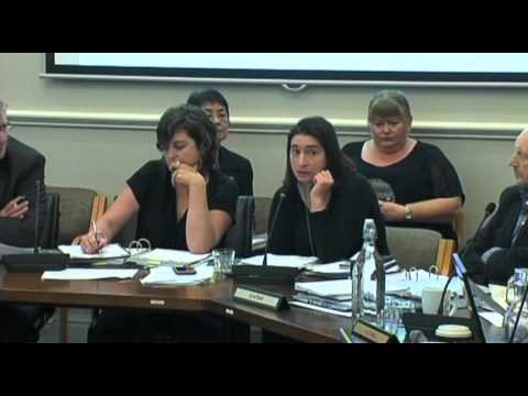 Dunedin City Council - Annual Plan Meeting - Jan 26 2016 - Part 2