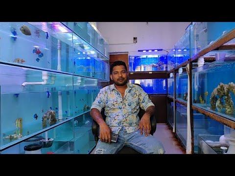 Latest Marine Fish Prices