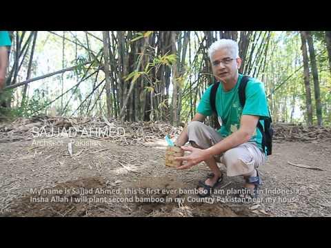 BAMBOO TREKKING [full documentary]