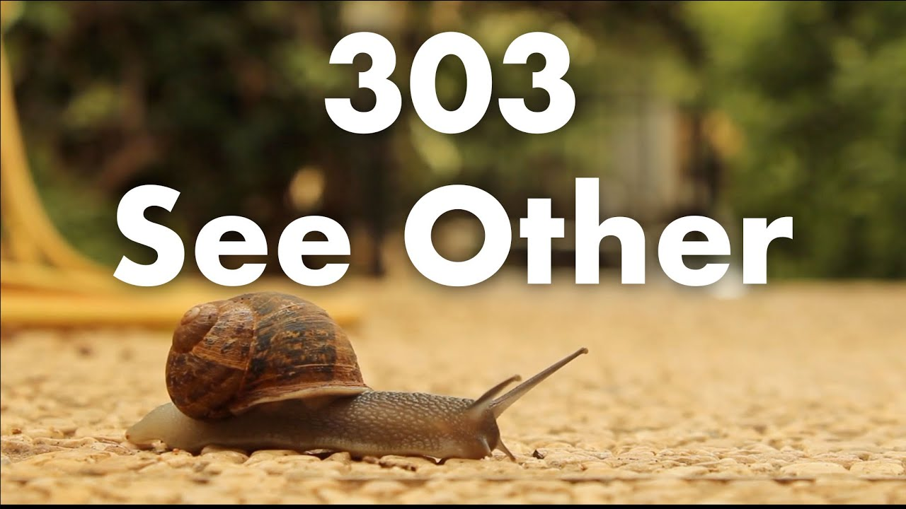 303 See Other - YouTube