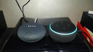 Dialogo tra Alexa e Google Home Mini