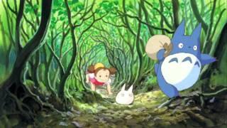 Mi vecino Totoro ^^