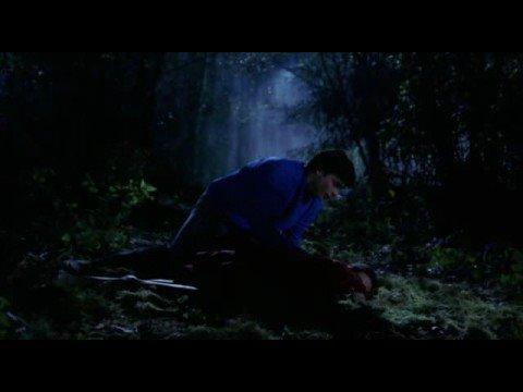 Smallville  Skinwalker  Tamara Feldman 1