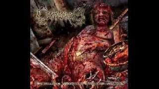 Cephalotripsy-Aesthetic Upholstery Of Molested Dead Flesh (Lyrics)
