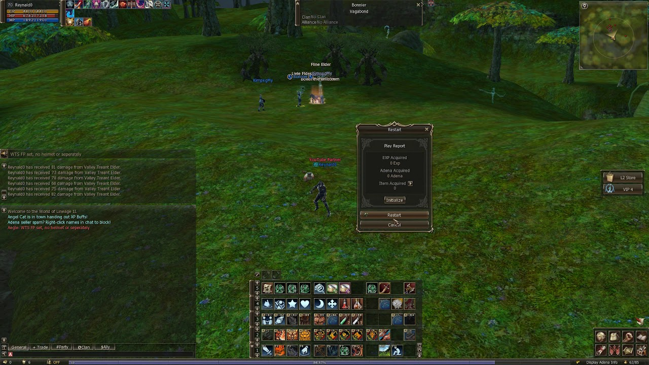 Lineage 2 Classic NA Bots in Enchanted Valley / Lineage 2 Classic bots