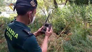Finaliza la búsqueda de un posible cocodrilo en Valladolid