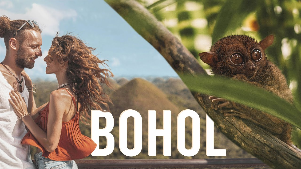 WATCH THIS to find Fireflies & Tarsiers in Bohol / Philippines!