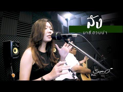ลัง - มาลีฮวนน่า  - Live Acoustic :  Cover 「 ส้มโอ Stage Fighter 」^^.V.
