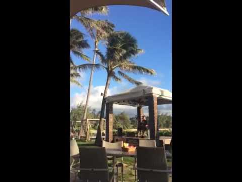 Sunset music at Turtle Bay Resort