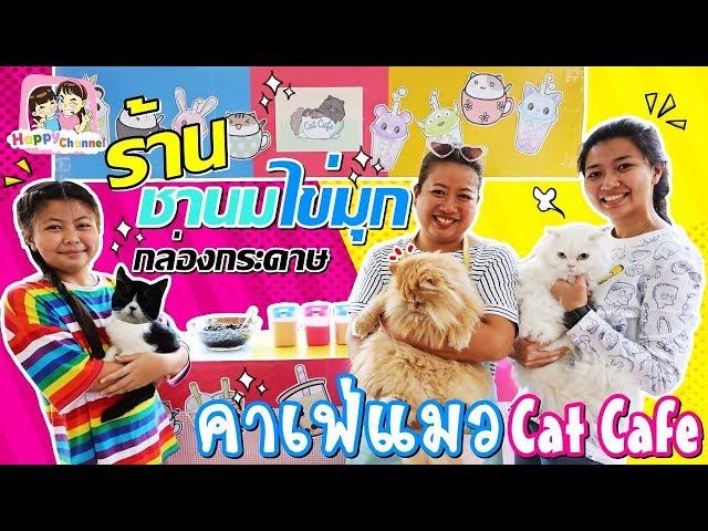ร้านชานมไข่มุกกล่องกระดาษ คาเฟ่แมว พี่ฟิล์ม น้องฟิวส์ Happy Channel