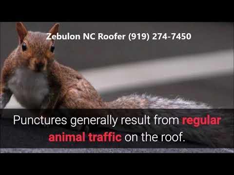 Prevent Leaking Roof Zebulon NC