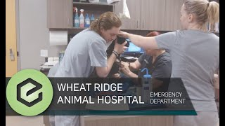 Wheat Ridge Animal Hospital 24/365 Emergency Department