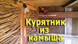 Строительство теплого курятника из камыша (укр.)(, 2016-11-06T12:46:54.000Z)