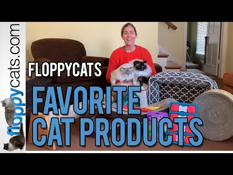 Best Cat Products 2019 - Floppycats Favorite Cat Product Video