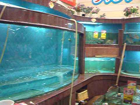 China Shenzhen Sea food Restaurant
