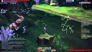 Tera quest: Faeries in a fix(lvl13).mp4