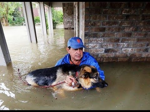 Download Youtube: Powerful Photos From Hurricane Harvey That Show The Devastating Power Of Nature