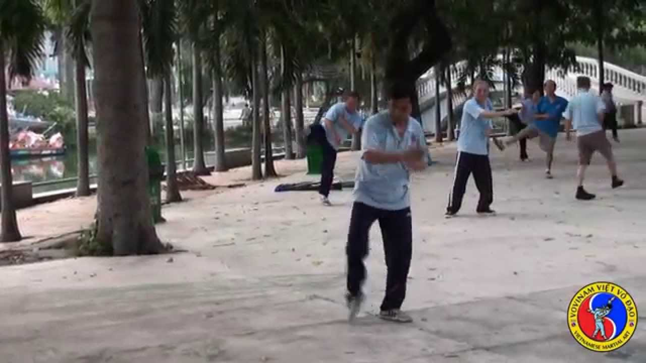 Arte Vietnam English Vovinam Viet Vo Dao The Vietnamese Martial Art English