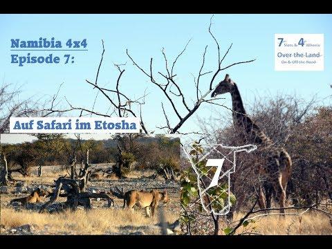 Namibia 4x4, Episode 7: Auf Safari im Etosha