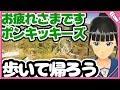 "【Cover】歩いて帰ろう/斉藤和義『ポンキッキーズ』Aruite Kaerou/Kazuyoshi Saito ""Ponkickies"""