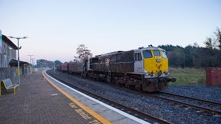 081 On A Waterford- West Of Ireland Empty Timber Train At Clara 22-nov-13
