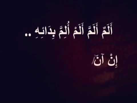 مدو نة بلال عبد الهادي 2