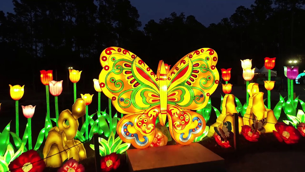 Brookgreen Summer Lights Festival 2018 Youtube