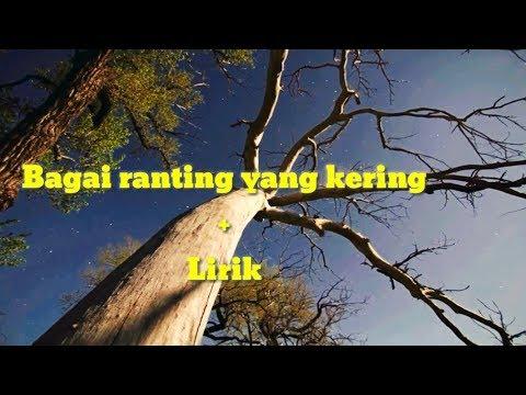 BAGAI RANTING YANG KERING+LIRIK  dangdut koplo enak..