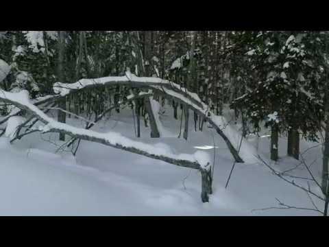 """лыжные  соревнования """"Долинский спринт"""" 2018"""