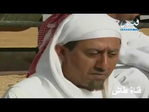 طاش ما طاش هزار خايف من الحيه Youtube