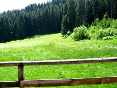 Том Джоунс-Зелените поля на моя роден дом