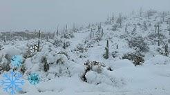 ARIZONA WINTER SNOW STORM. DRIVE TO THE TOP OF DESERT MOUNTAIN AND BACK - SCOTTSDALE, ARIZONA