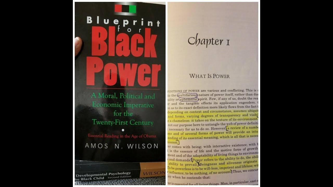 Dr. Amos Wilson, Blueprint For Black Power Chapter 1 - RAM Bookclub