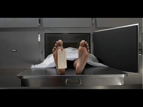 Tutorial on Embalming