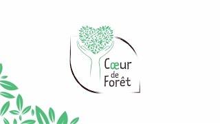 Bilan 10 ans d'action Cœur de Forêt