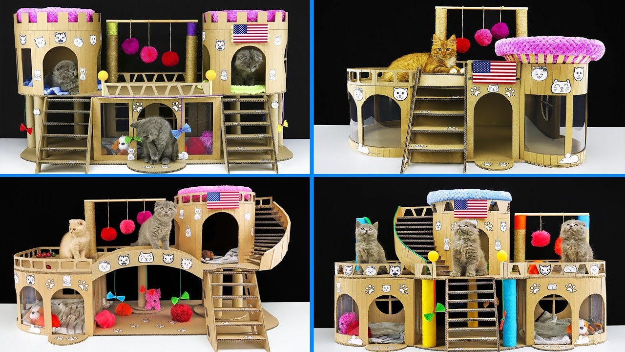 Top 4 Best Cats Houses Ever Made From Cardboard