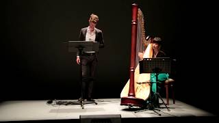 Wim Mertens - The Fosse (György Philipp - voice, Sára Goda - harp)