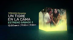 ▶ Un tigre en la cama FULL MOVIE |  HD