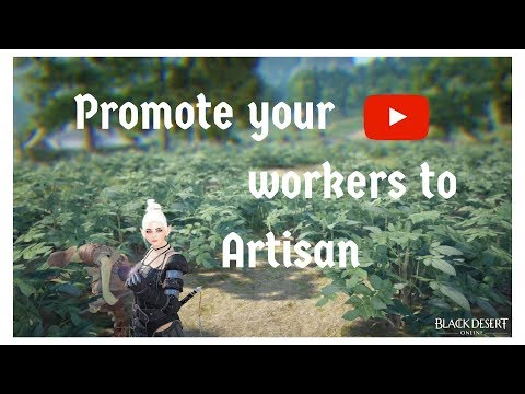 How To Promote Your Workers To Artisan Workers In Black Desert Online BDO