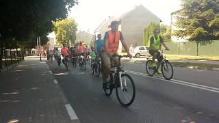 Piąty rajd rowerowy – Odjazdowy Bibliotekarz