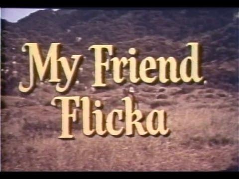 My Friend Flicka 05 Of 39 - Cavalry Horse