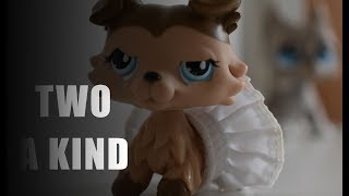 Littlest Pet Shop - Two A Kind Osa 16 Kausi 2