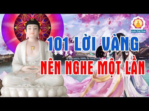 Kể Chuyện Đêm Khuya Đêm Mất Ngủ Âu Lo Nghe 101 Lời Vàng Phật Dạy Giúp Đắc Nhân Tâm Thấu Sự Đời #Mới