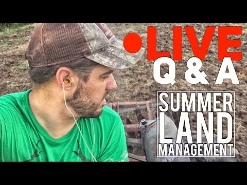 LIVE Q & A - Summer Time Deer/Land Management