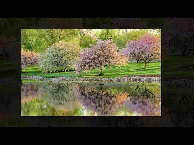 Смотреть видео Люблю весну!