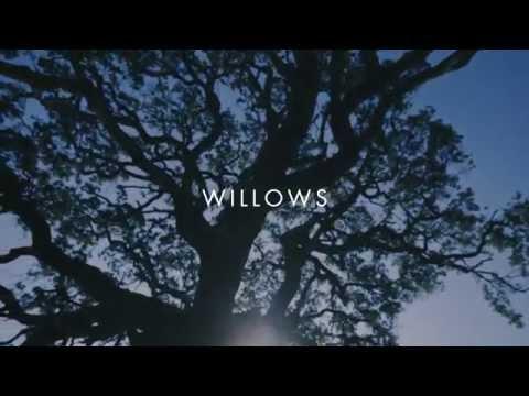 Vanessa Carlton - Willows [Lyric Video]