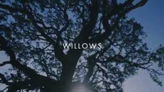 Vanessa Carlton - Willows [Lyric Video]