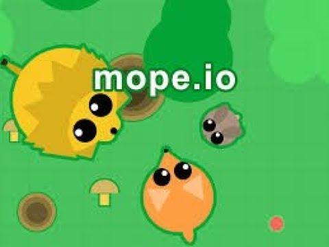 Moep Io